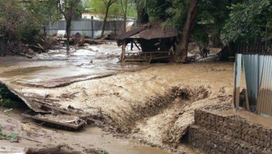 В Кашкадарье сель затопил свыше сотни домов, смыл 12 мостов